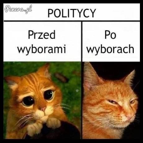 Politycy przed wyborami i po wyborach