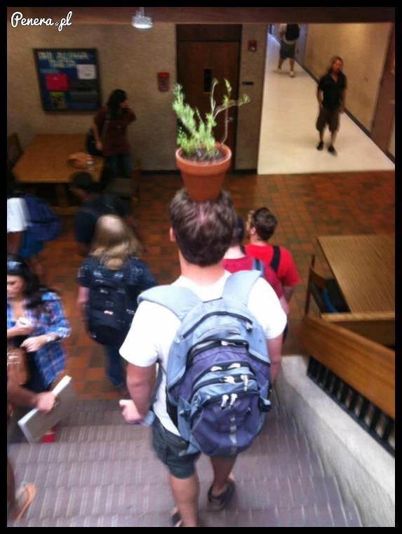 Typ chodzi tak po szkole i nikt nie wie o co mu chodzi