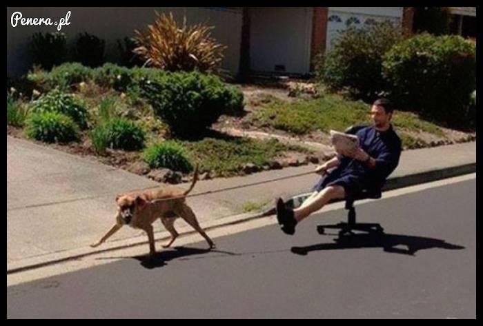 Kiedy nie chce Ci się wyjść z psem ale żona nalega