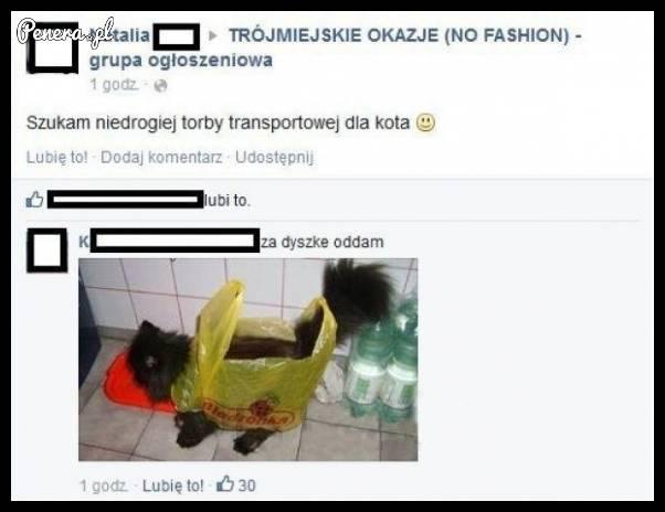 Niedroga torba transportowa dla kotka ;)