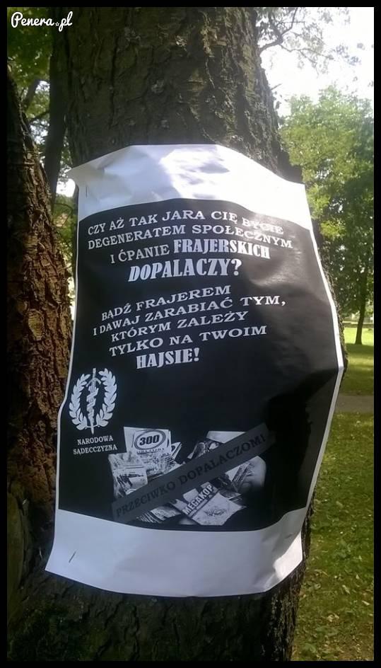 Kampania przeciw dopalaczom na drzewie
