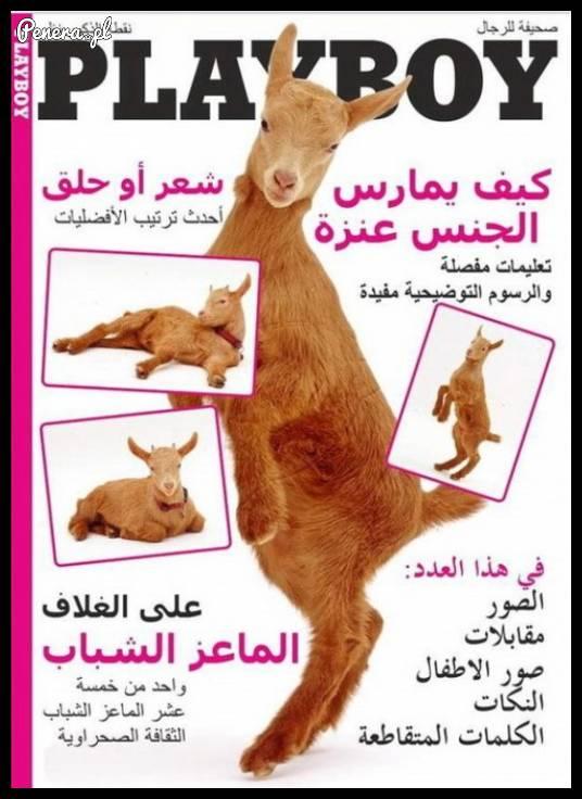 Znane czasopismo wchodzi na rynek arabski ;)