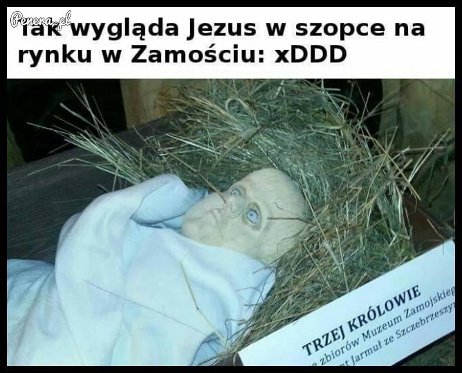 Tak wygląda Jezus w szopce na rynku w Zamościu