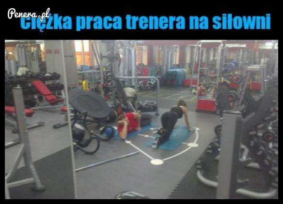 Ciężka praca trenera na siłowni