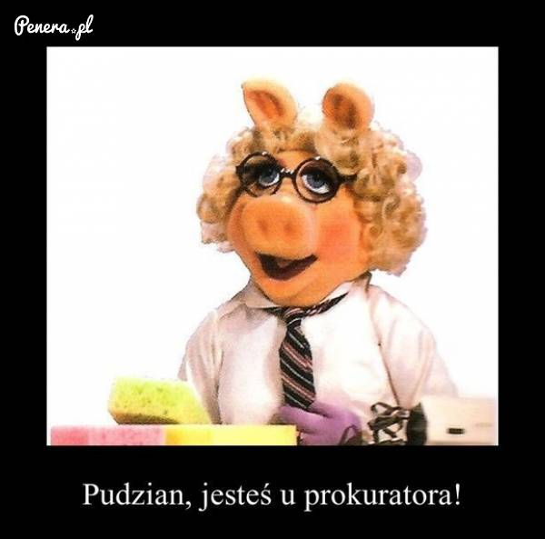 Pudzian, jesteś u prokuratora