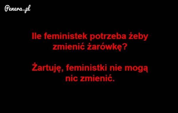 Ile feministek potrzeba do zmiany żarówki?