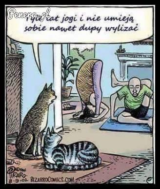 Tyle lat jogi