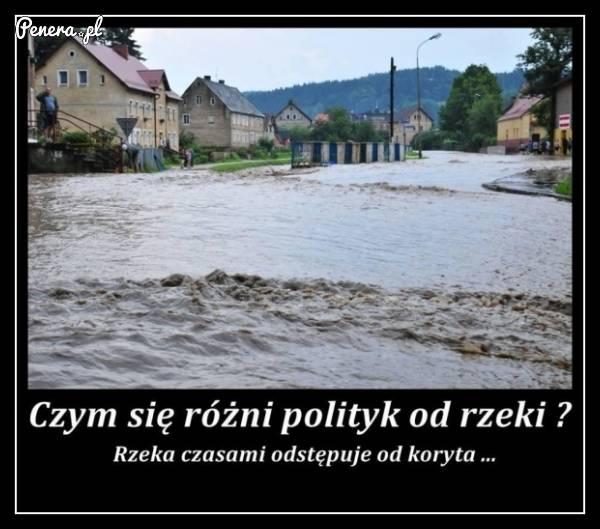 Czym różni się polityk od rzeki?
