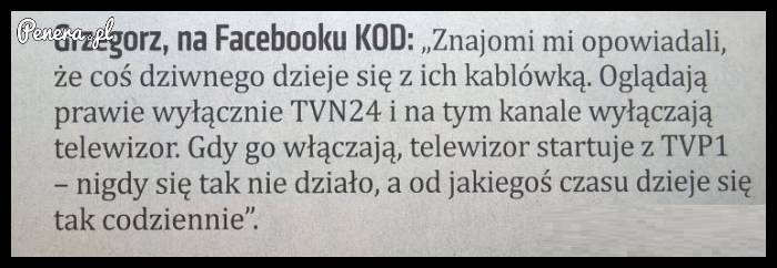 Dramat Grzegorza z KODu
