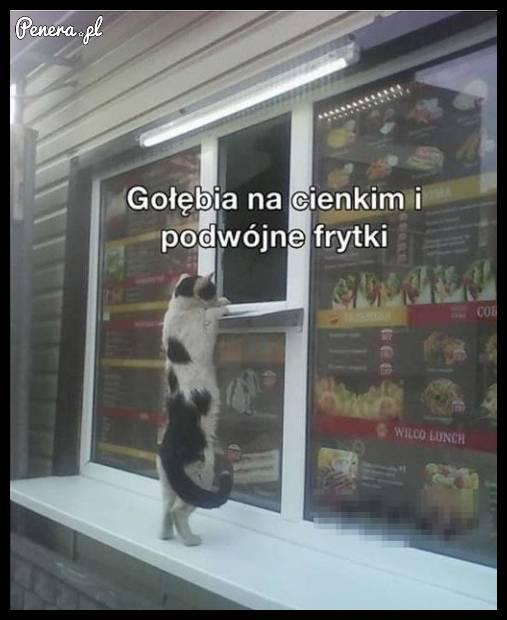 Kot zamawia na wynos