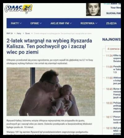 2-latek wtargnął na wybieg Ryszarda Kalisza