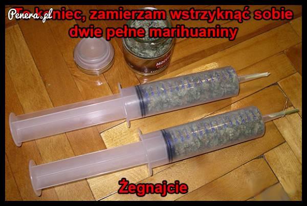 Dwie pełne marihuaniny - to koniec