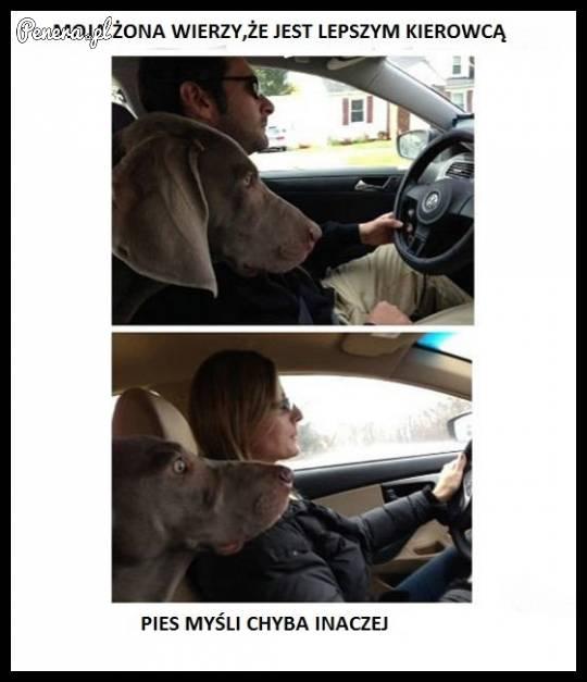 Moja żona wierzy że jest lepszym kierowcą