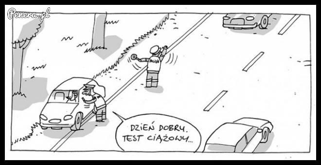 Już niedługo kontrole na polskich drogach