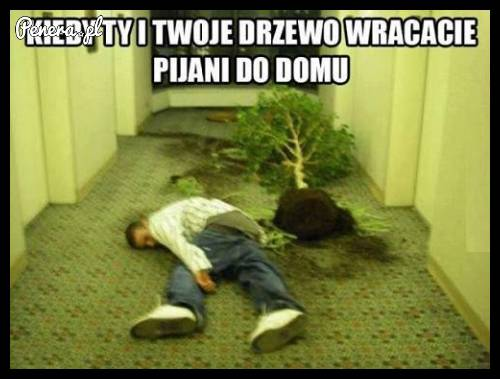 [Obrazek: kiedy_ty_i_twoje_drzewo_wracacie_pijani_...-32-28.jpg]