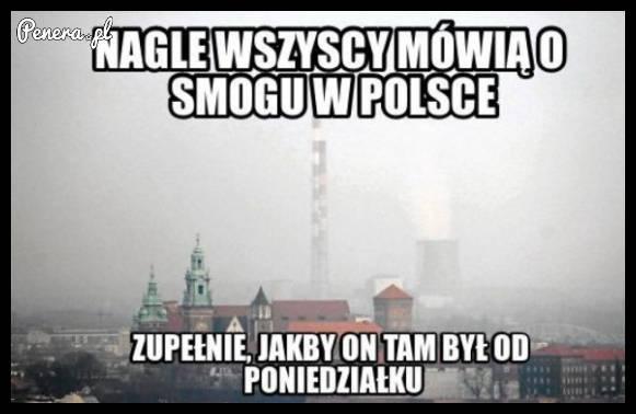 Nagle wszyscy mówią o smogu w Polsce