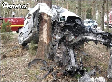A tak się kasuje BMW na drzewie