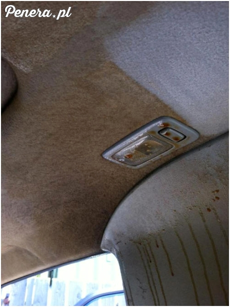 Czyszczenie tapicerki auta zawodowego jaracza fajek