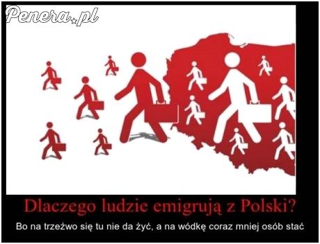 Dlaczego ludzie emigrują z Polski