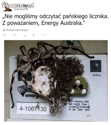 Elektryk który nie mógł odczytać licznika
