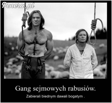 Gang sejmowych rabusiów