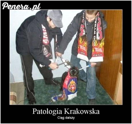 Kraków - Stolica polskiej kultury