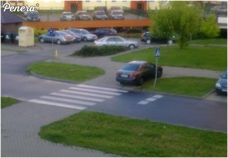 Parkowanie kolejnego durnia - Gorzów