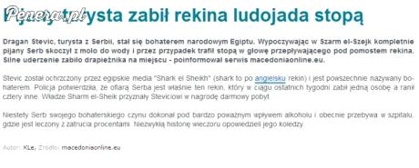 Pijany Serb zabił stopą rekina ludojada