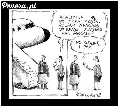 Polacy wracają do kraju