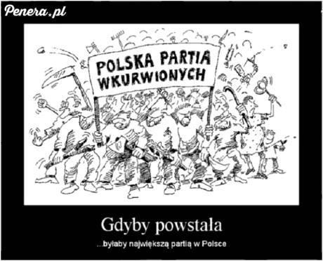 Polska partia Wkurw*onych
