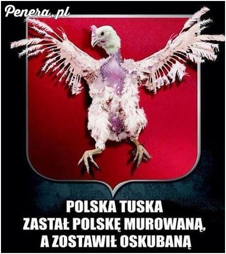 Polska Tuska - zastał murowaną zostawił oskubaną
