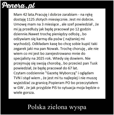 Polska zielona wyspa