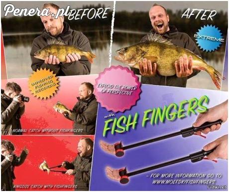 Ryba z łapy wygląda o wiele lepiej