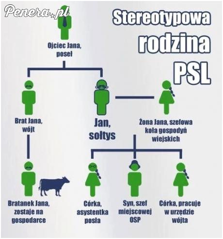 Stereotypowa rodzina PSL