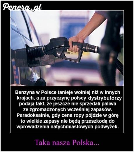 Tak własnie wygląda nasza Polska rzeczywistość