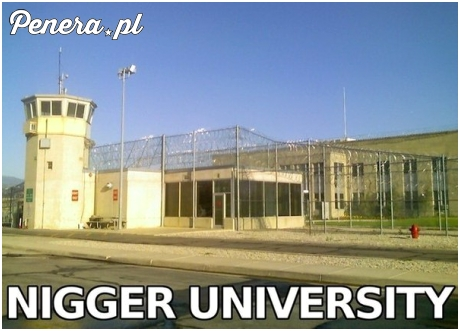 Uniwersytet stanowy