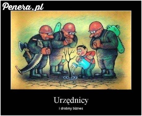 Urzednicy kontra mały biznes w Polsce