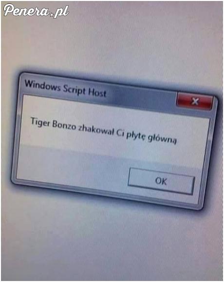Uwaga Tiger Bonzo zaczął hackować płyty główne
