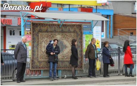 W Rosji dywany są nawet na przystankach
