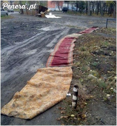 W Rosji kładą dywany zamiast chodników