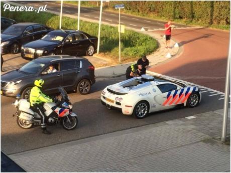 Z policją w Holandii nie masz szans