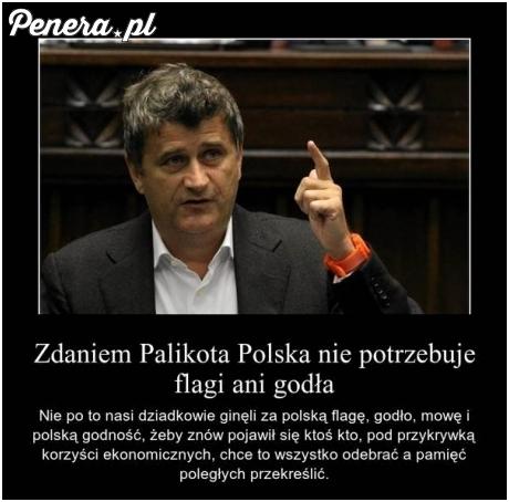 Zdaniem Palikota Polska nie potrzebuje flagi ani godła
